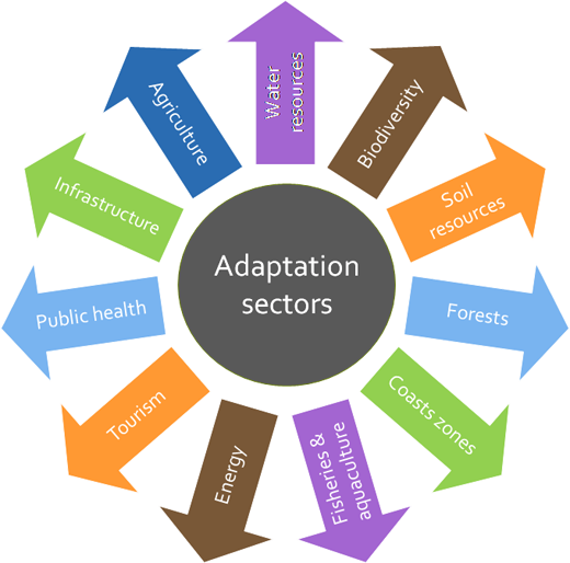 thesis climate change adaptation